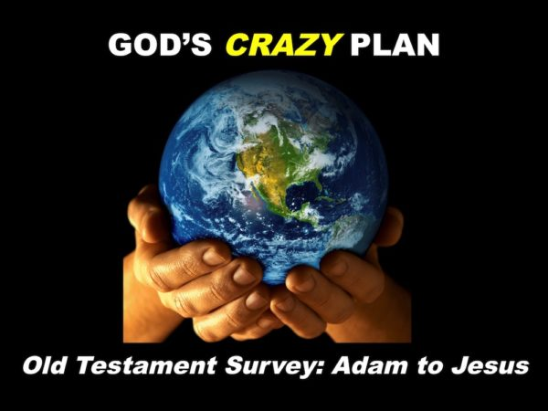 God's Crazy Plan